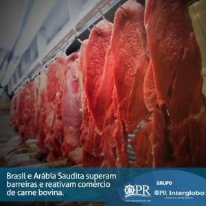 Brasil e Arábia Saudita superam barreiras e reativam comércio de carne bovina.